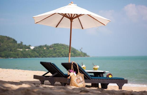 фотографии Peace Resort Bungalow изображение №4