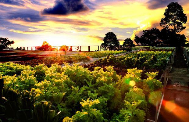 фото Sea View Resort & Spa Koh Chang изображение №2