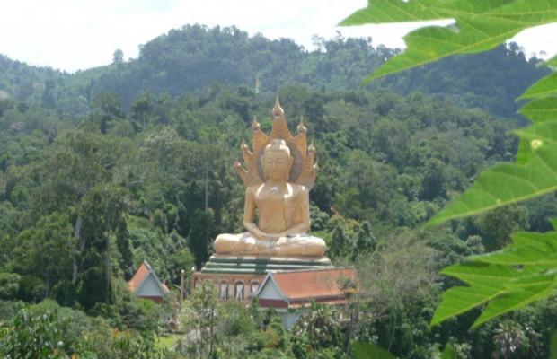 фотографии отеля Klong Muang Inn изображение №3