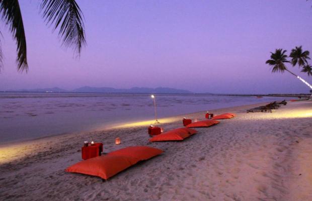 фотографии отеля Mimosa Resort & Spa изображение №11