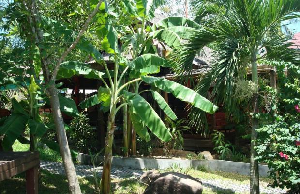 фотографии отеля Tropical Garden Lounge Hotel & Resort изображение №43