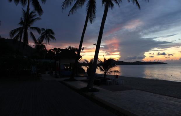 фотографии Weekender Resort & Spa изображение №8