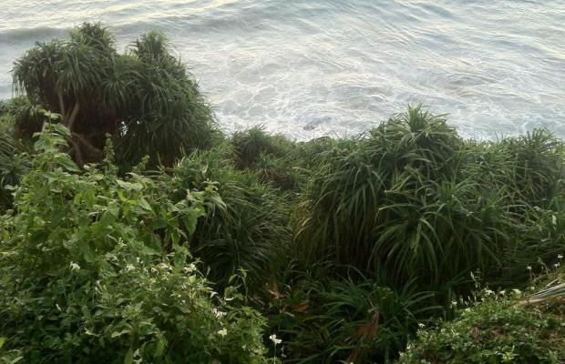 фотографии Clafouti Beach Resort изображение №20