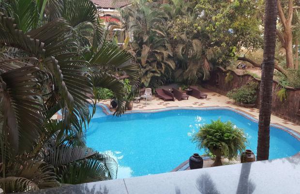 фотографии отеля Alidia Beach Resort (Alidia Beach Cottages) изображение №19