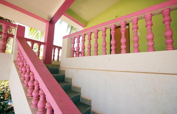 фотографии God's Gift Guesthouse (Arambol) изображение №28