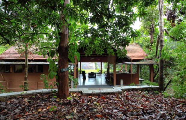 фото отеля Rainforest Boutique Resort изображение №21