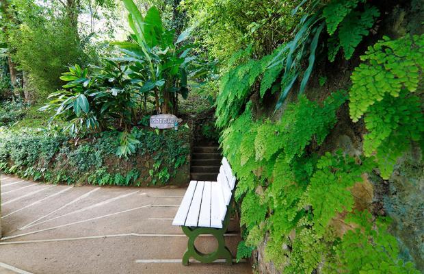 фото отеля Tea Valley изображение №45