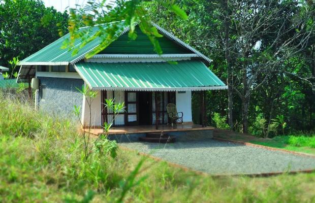 фотографии отеля Punarjani Ayurvedic Resorts изображение №31