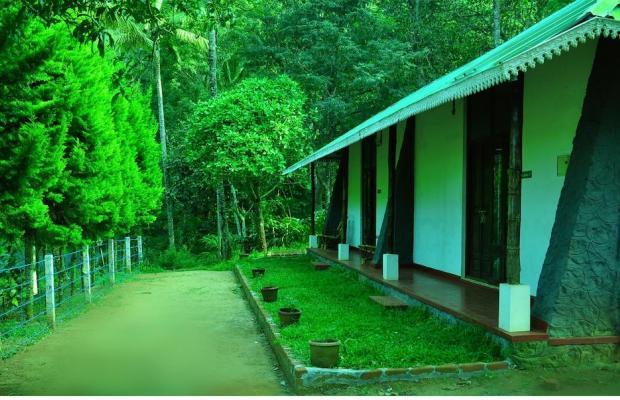 фотографии отеля Punarjani Ayurvedic Resorts изображение №23