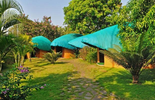 фотографии отеля Devaaya Ayurveda & Nature Cure Centre изображение №19