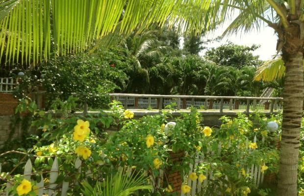 фотографии отеля Green Papaya Organic Village изображение №31