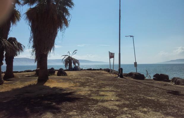 фото Amnun 2000 Recreation Village (ex. Tulip Inn Sea of Galilee) изображение №10