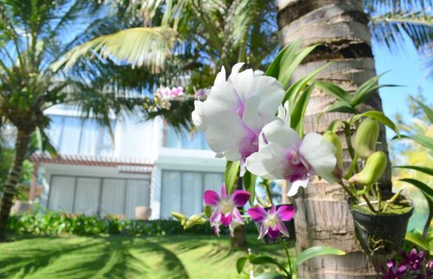 фото Sonata Resort & Spa изображение №34