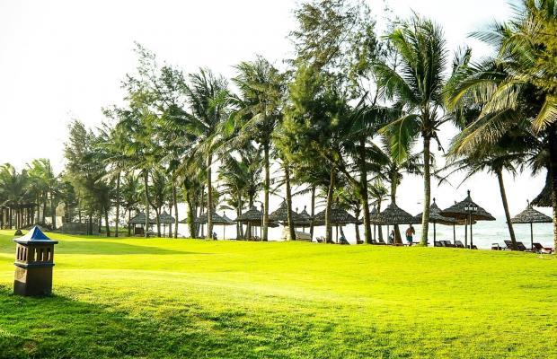 фотографии отеля Palm Garden Beach Resort & Spa изображение №15
