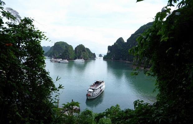 фото Alova Gold Cruises Ha Long изображение №6