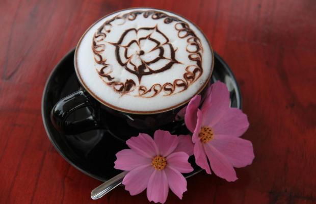 фото отеля Zen Cafe Dalat изображение №13