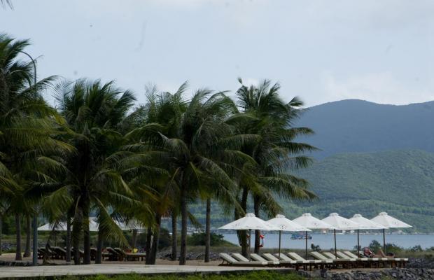 фотографии отеля Paragon Villa Hotel изображение №35