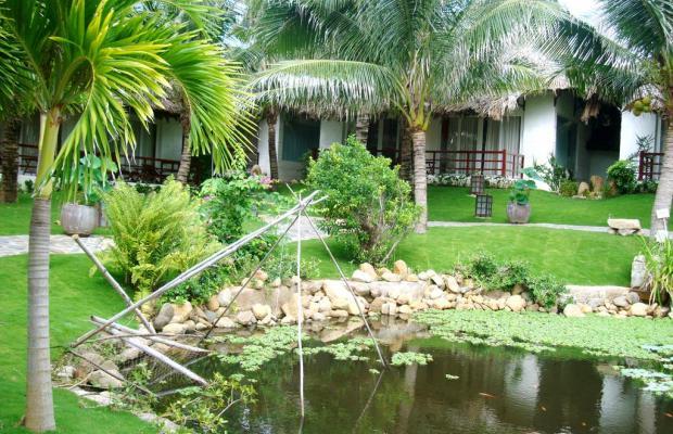 фотографии отеля TTC Premium Ke Ga  (ex. Pegasus Resort; ех. Hana Beach Resort) изображение №27