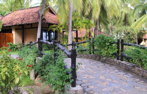 фотографии отеля Seahorse Resort & Spa изображение №11