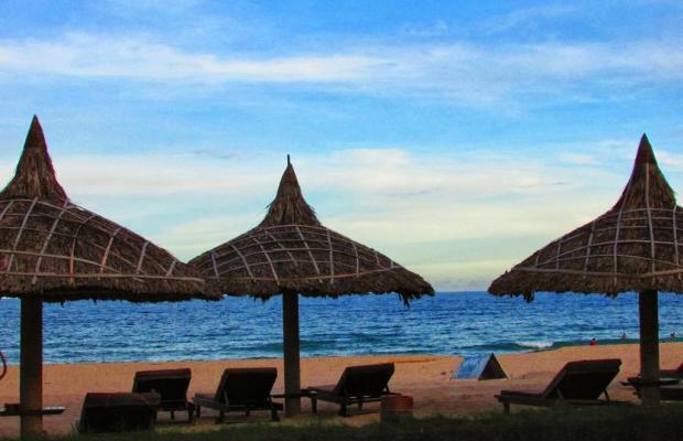 фотографии The Beach Resort изображение №12