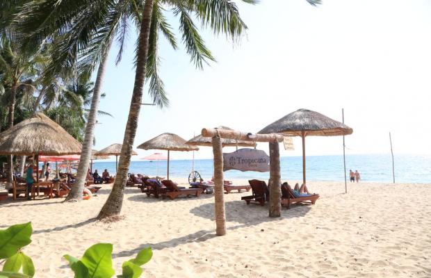 фото Tropicana Resort изображение №30