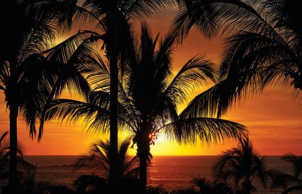 фотографии отеля Four Seasons Punta Mita изображение №3