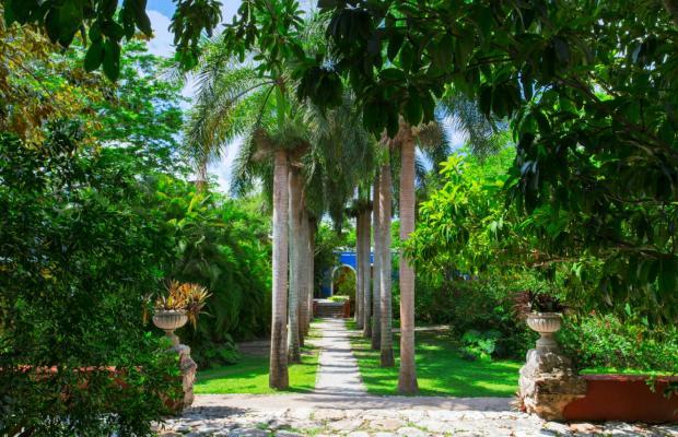 фото Hacienda San Jose изображение №30