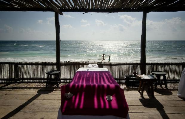 фотографии Papaya playa изображение №24