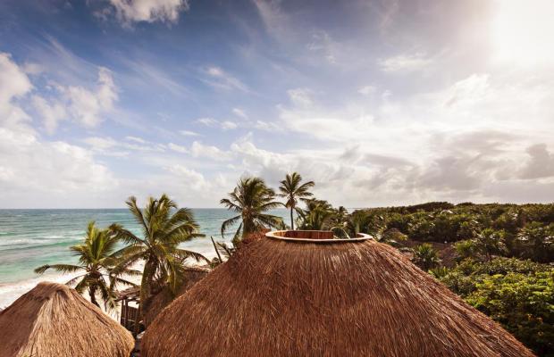 фотографии Papaya playa изображение №16