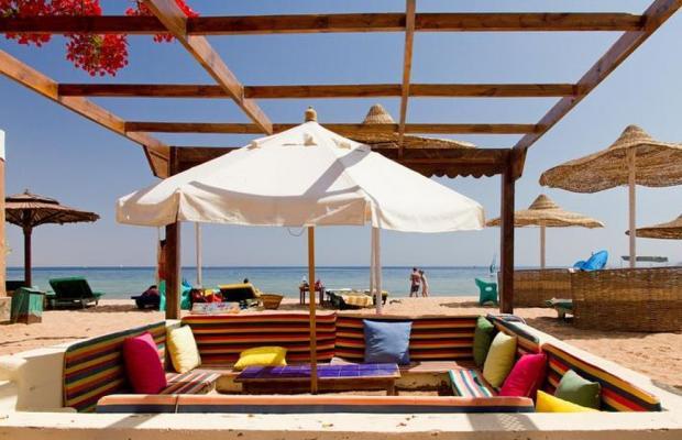 фото Ganet Sinai Resort изображение №10