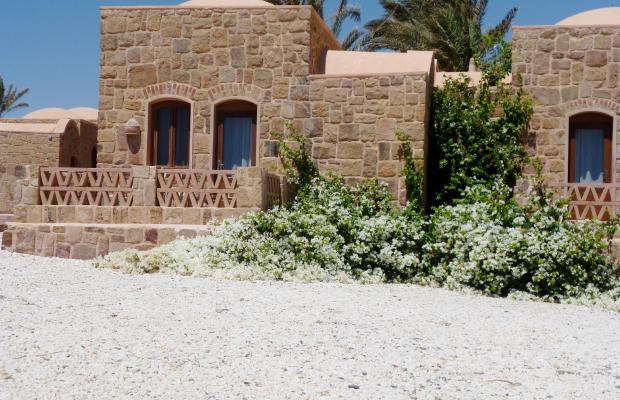 фотографии отеля Movenpick Resort El Quseir изображение №47