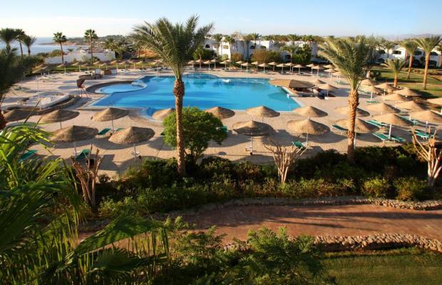 фото отеля Domina Coral Bay Oasis Resort (ex. Domina Hotel & Resort Oasis) изображение №9
