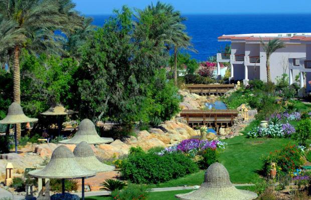 фото отеля Radisson Blu Resort (ex. Radisson Sas) изображение №13