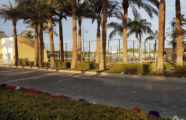 фотографии отеля Reef Oasis Beach Resort изображение №31