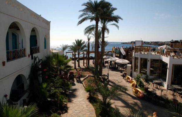 фото отеля Hotel Planet Oasis изображение №37