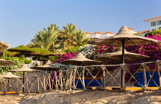 фото отеля Red Sea Hotels Siva Sharm Resort & Spa (ex. Savita Resort And Spa; La Vita Resort) изображение №13