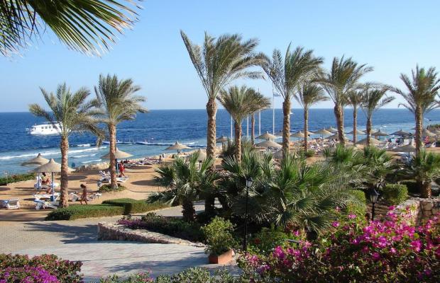фотографии отеля Queen Sharm Resort изображение №19