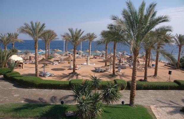 фотографии отеля Queen Sharm Resort изображение №7