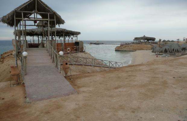 фотографии Zabargad Beach Resort изображение №32
