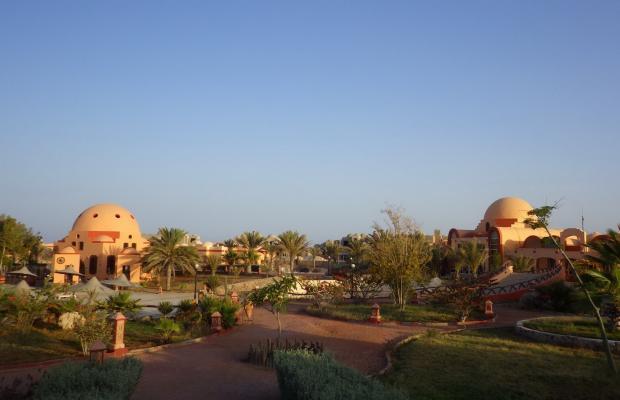 фотографии отеля Zabargad Beach Resort изображение №27