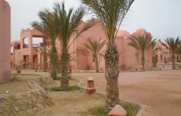 фото Zabargad Beach Resort изображение №18