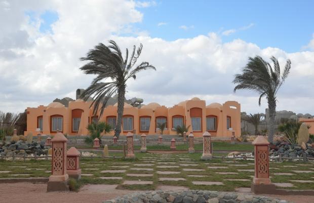 фото Zabargad Beach Resort изображение №14