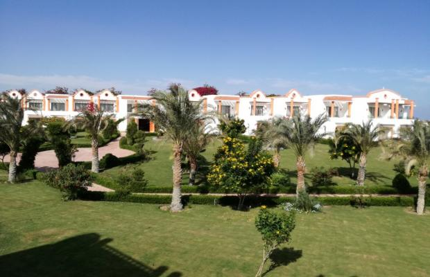 фото Fantazia Resort Marsa Alam (ex.Shores Fantazia Resort Marsa Alam) изображение №14