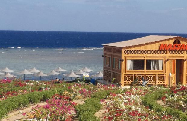 фотографии Fantazia Resort Marsa Alam (ex.Shores Fantazia Resort Marsa Alam) изображение №12