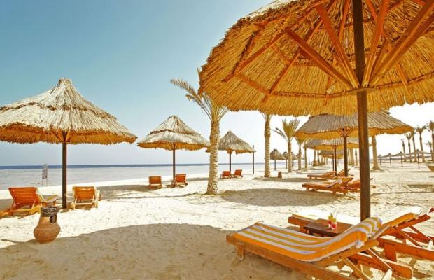 фото Dima Beach Resort  изображение №6