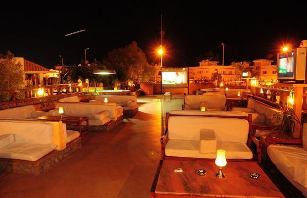 фотографии отеля Ocean Club Red Sea Hotel изображение №15
