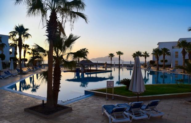 фотографии Aurora Cyrene Resort (ex. Crystal Cyrene; Sol Cyrene) изображение №4