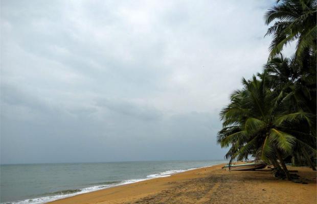 фотографии Olenka Sunside Beach изображение №8