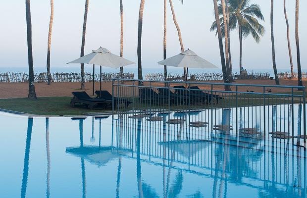 фотографии отеля Club Hotel Dolphin изображение №11