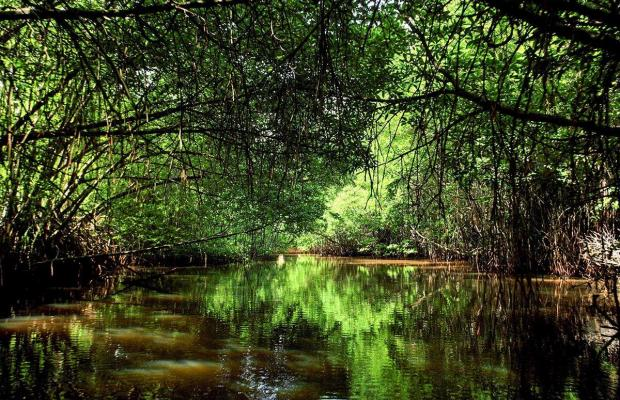 фотографии отеля Centara Ceysands Resort & Spa Sri Lanka (ex.Ceysands) изображение №51